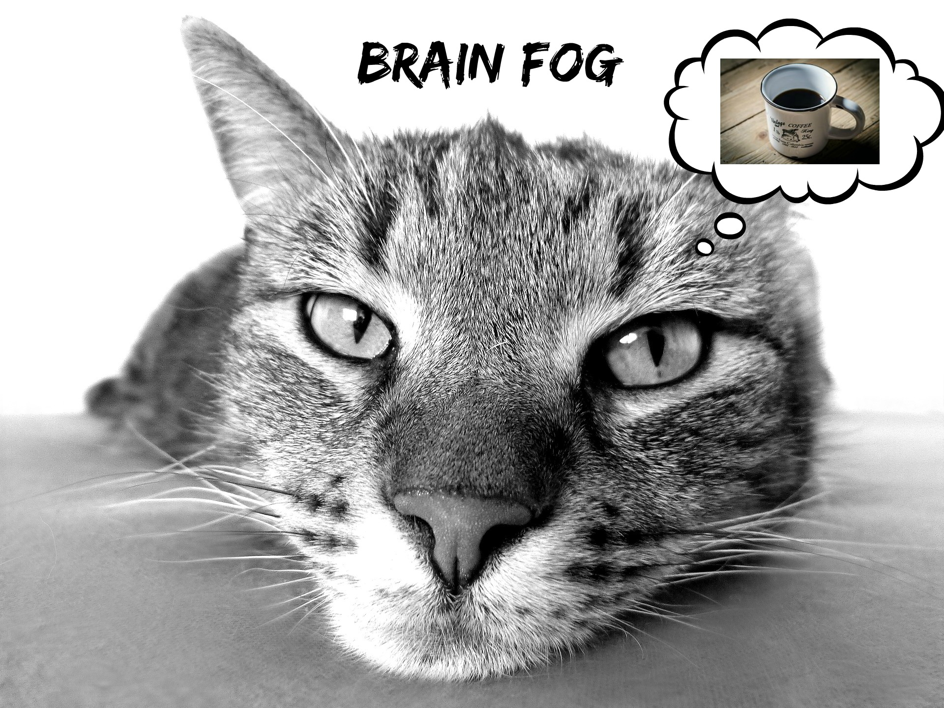 morning-brain-fog