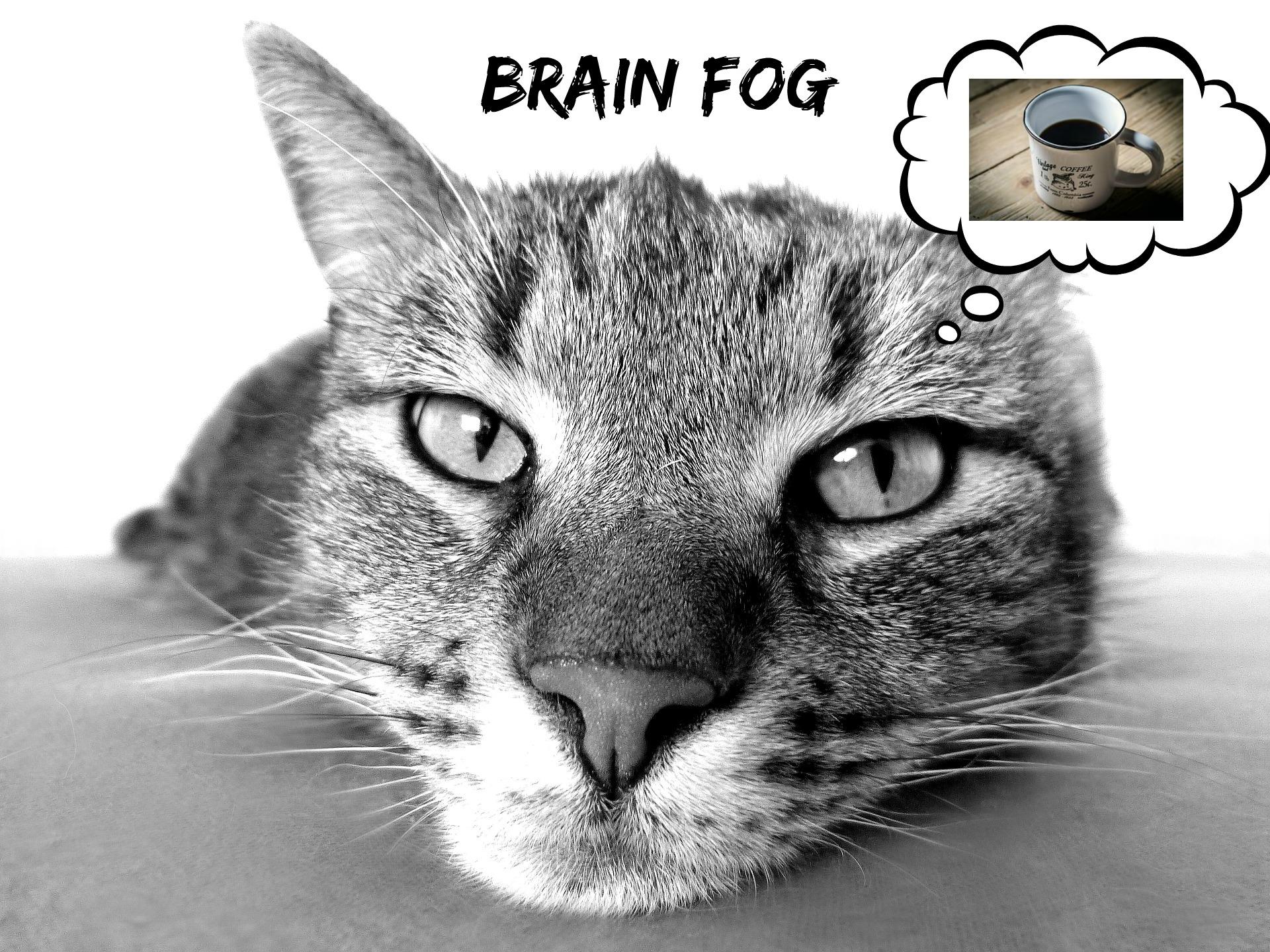 how to clear brain fog fast
